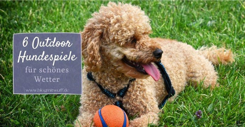 Read more about the article 6 Outdoor Hundespiele für schönes Wetter