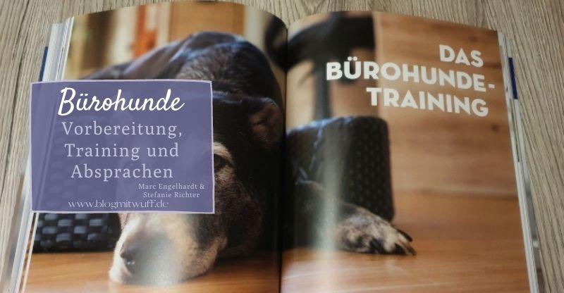 Read more about the article Buchvorstellung Bürohunde – Vorbereitung, Absprachen und Training