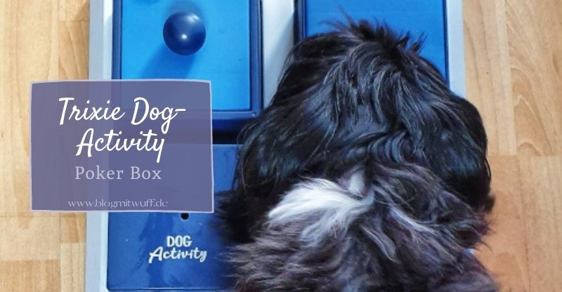Read more about the article Werbung | Trixie Dog Activity Poker Box