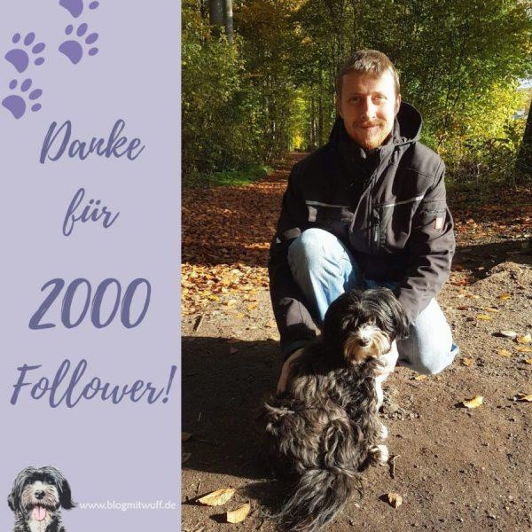 2000 Follower