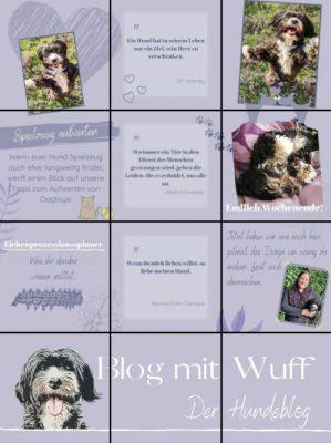 Blog mit Wuff bei Instagram