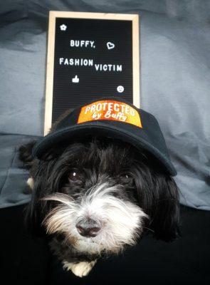 Buffy mit Cap von wauwau-wow.com