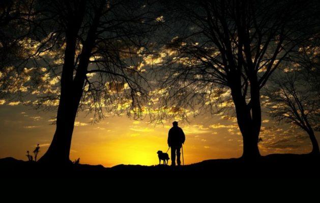 Danke an alle Hundepapas01