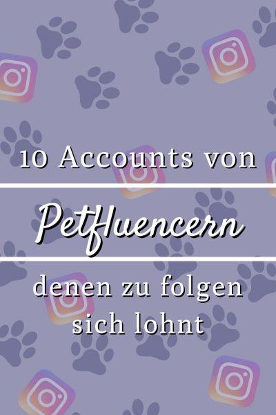 Pin 10 Petfluencer Accounts