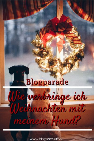 Blogparade Wie verbringe ich Weihnachten mit meinem Hund