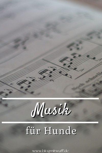 Pin Musik für Hunde
