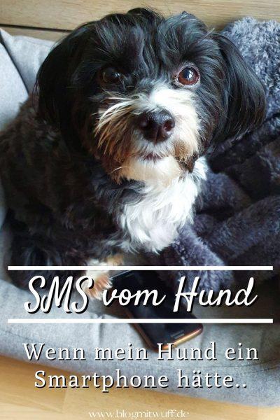 SMS vom Hund - Wenn mein Hund ein Smartphone hätte