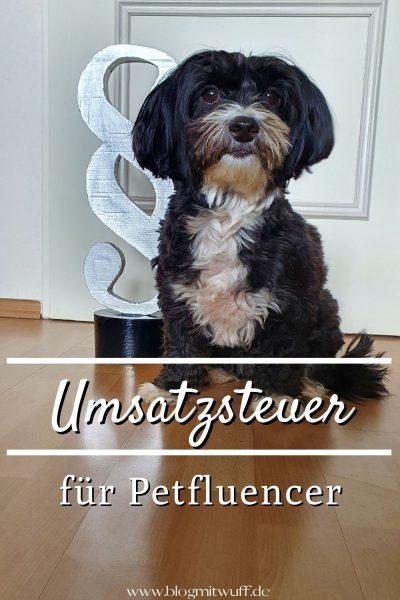 Pin Umsatzsteuer für Petfluencer