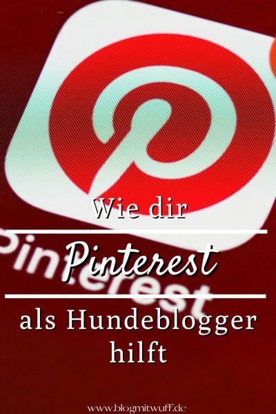 Pin Wie dir Pinterest als Hundeblogger hilft