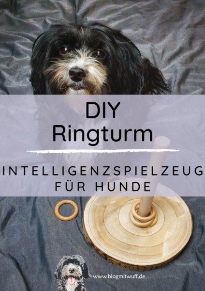 Titelbild zu DIY Ringturm