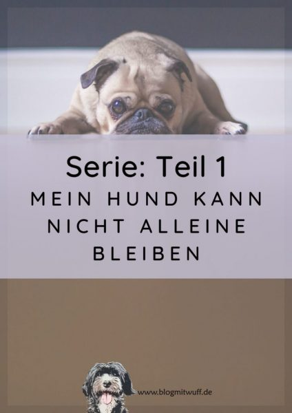 Titelbild zu Teil 1 Mein Hund kann nicht alleine bleiben