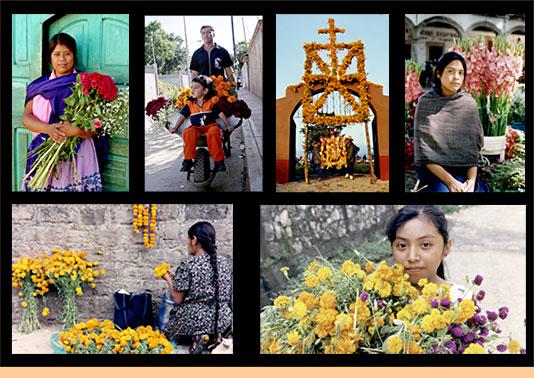 dia muertos mexico flores altares