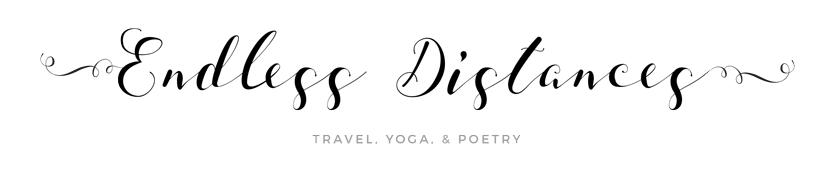 endless distances logo