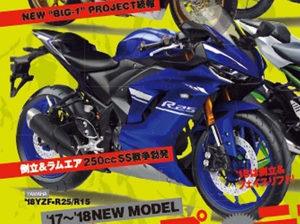 Yamaha R25 2017