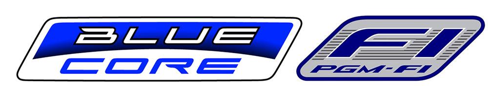 Bluecore dan PGMFI Injeksi Irit bensin