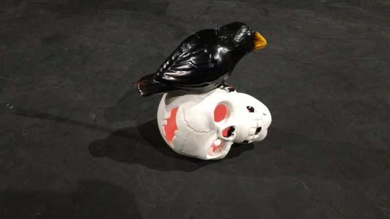 Skull prop with a plastic crow on top
