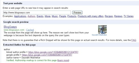 Rich Snippets Testing Tool  Owner