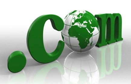 Choosing Dedicated Web Hosting Server