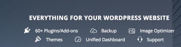 10Web WordPress Site Management _ WordPress Support Services