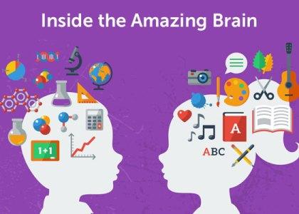 brain-learning