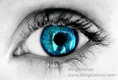 https://i2.wp.com/www.blogscienze.com/wp-content/uploads/2008/02/occhi-azzurri-mutazione-genetica-bruni.jpg