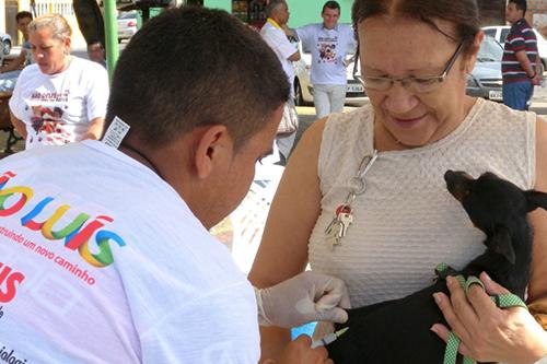vacinaanimais
