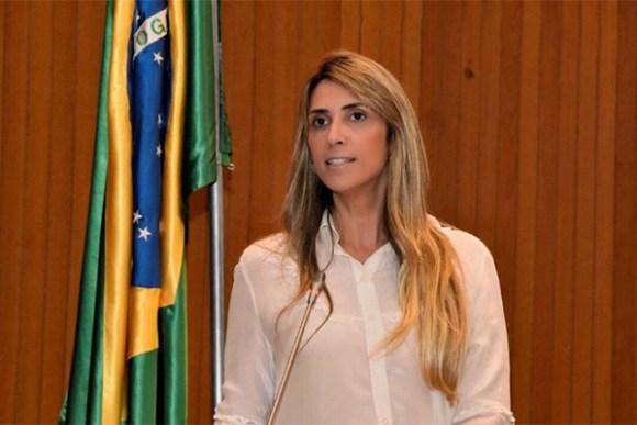 Deputada Andrea Murad denuncia problemas em escolas da região tocantina