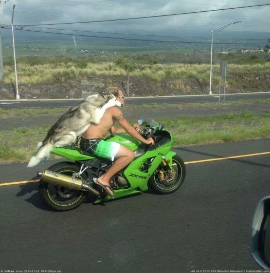 Des pilotes de moto sans casque
