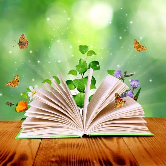 Creatividad y comprensión lectora