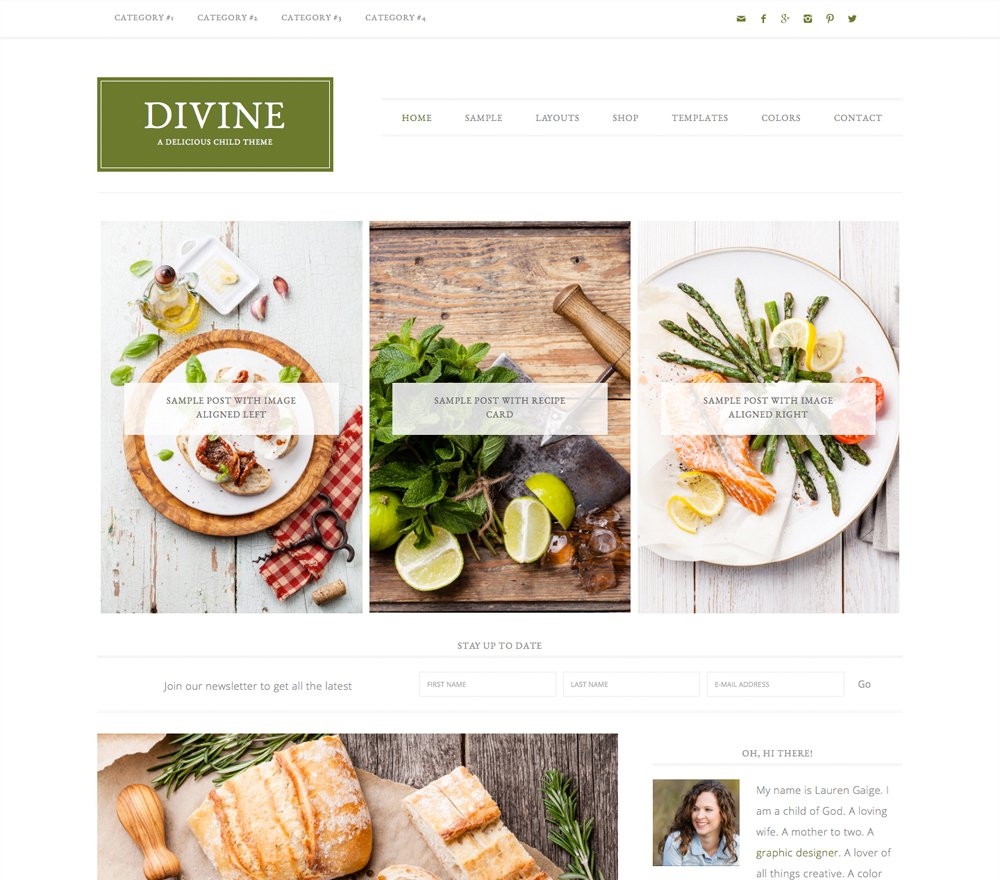 Divine Pro WordPress Theme