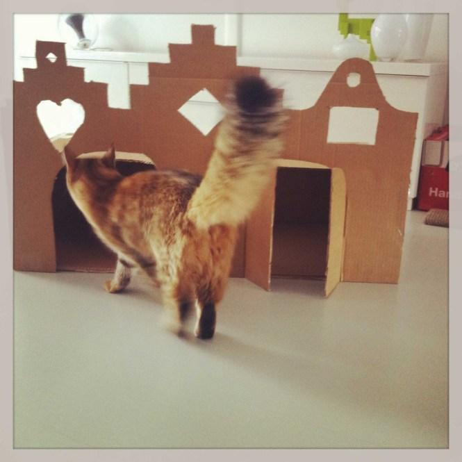 grachtenpand-diy-zelf-maken-voor-katten