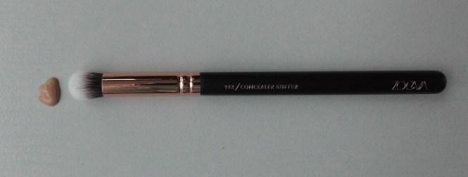 DSCI0336