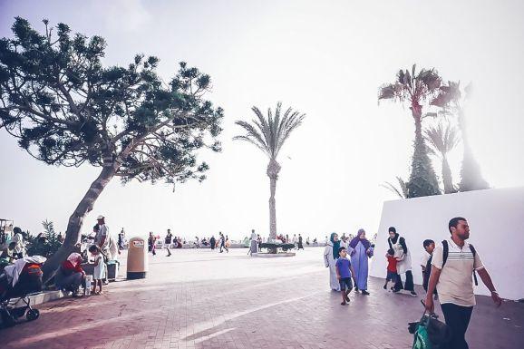 agadir morocco beach palm trees