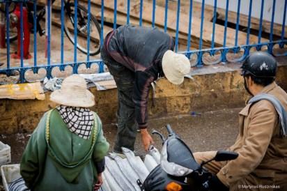 essaouira, morocco, fish, fishmarket, fishermen
