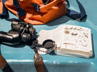 beach morocco sand water birdwatching book boat