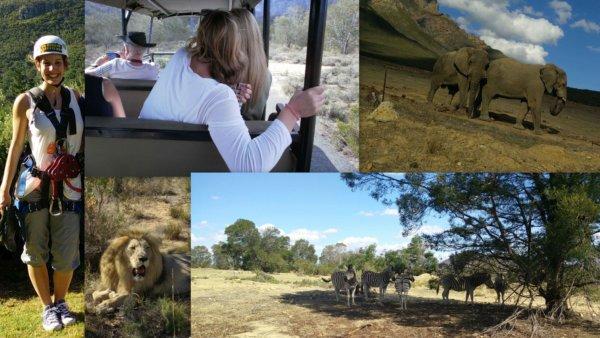 Südafrika#2_Safari Collage_BSL