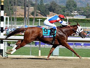 Groupie Doll Profile News Entries Results Video And