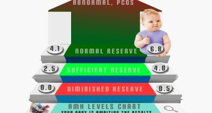 AMH levels infographic