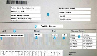 hcg blood test results