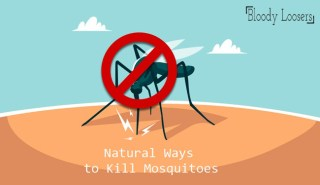 How to Kill Mosquitoes without Medicine