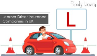 List of the Best Learner Driver Insurance Companies in UK