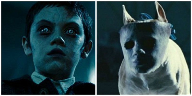 Unborn masked dog and kid