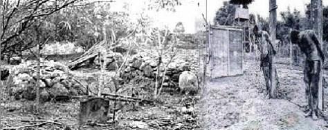 prisoners-punished
