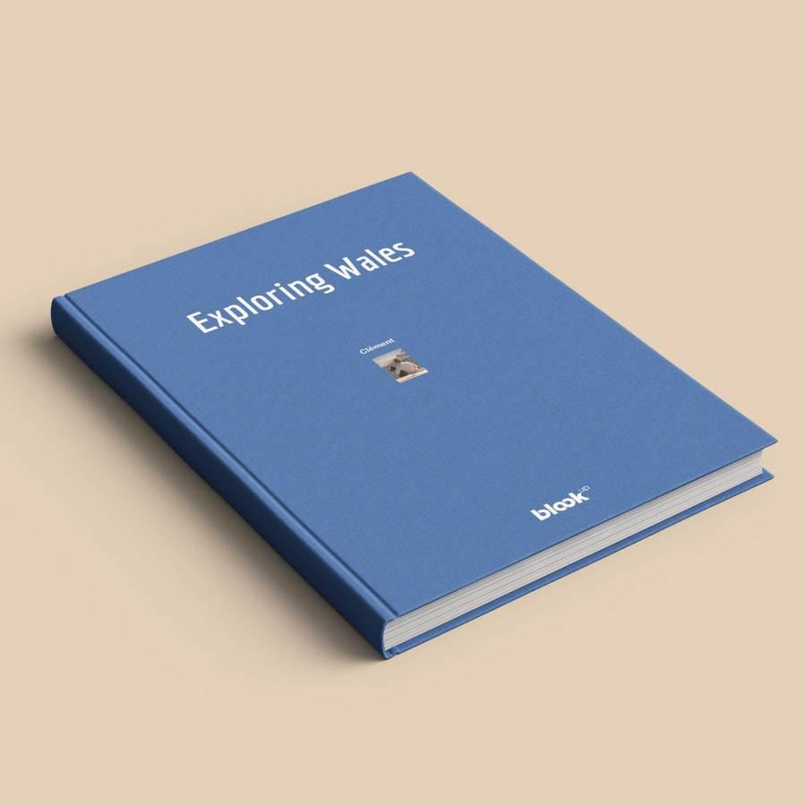 Blog book cover blue