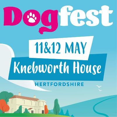 Dog Fest 2019 poster
