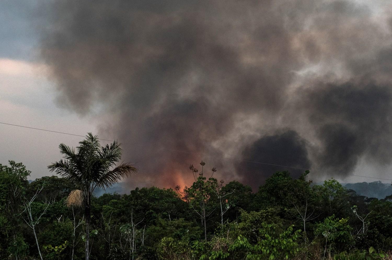 Brazilian Amazon fires