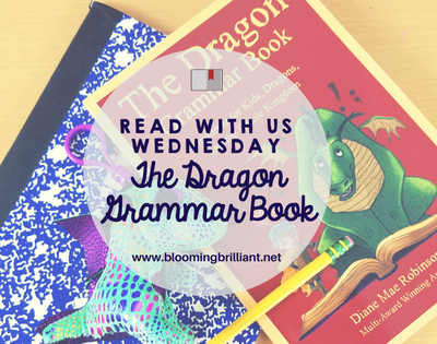 The Dragon Grammar Book will help you if you are looking for a fun way to teach your kids grammar that will help them understand.