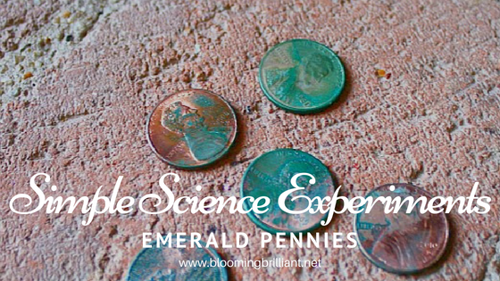 Exploring the acidic reaction vinegar has on pennies in Emerald Pennies