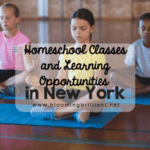 Homeschool Classes and Learning Opportunities in New York