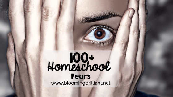 100+ Homeschool Fears we are all guilty of